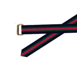 Barrons Hunter - Wide Grosgrain Belt with Gold Rectangular D-Rings