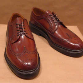 ALDEN - Ravello Shell Cordovan Long Wing Blucher Oxford
