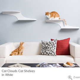 cat silhouette cat shelves