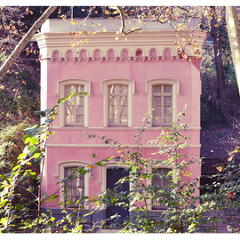 pink house in the woods