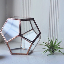 ABJglassworks - small dodecahedron glass terrarium with a hinged door
