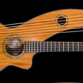 Timberline guitars - PARLOR HARP GUITAR