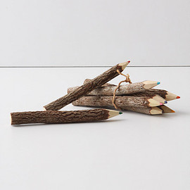 Anthropologie - Twig tree colouring pencils