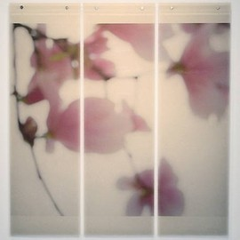 Jeri Eisenberg - Magnolia #4, archival pigment ink on kozo paper infused with encaustic medium