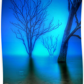JASON GREEN - Foggy Dawn at Lake Eildon #3 by Jason Green
