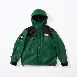 Supreme, THE NORTH FACE - Leather Mountain Parka / Green