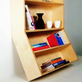 Robert Worth - Angled Bookcase