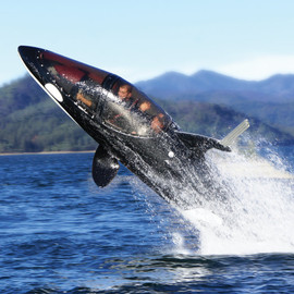 Seabreacher - The Killer Whale Submarine 'Y'