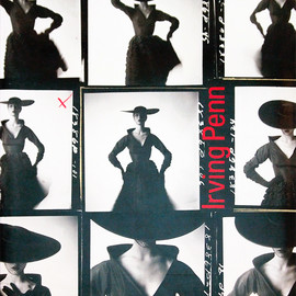 アーヴィング・ペン 写真集 | Irving Penn: A Career in Photography