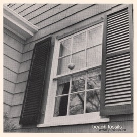 Beach Fossils - BEACH FOSSILS - What A Pleasure image
