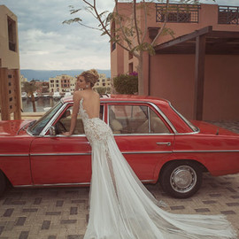 WEDDING - Beautiful Bridal Collection By Tal Kahlon