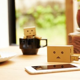 cheero - DANBOARD USB Cable with Lightning & Micro USB connector