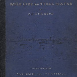 Pictures from Life in Field and Fen, 1887