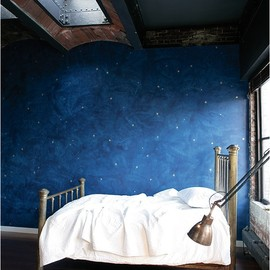 starry night - bedroom. This would be nice.