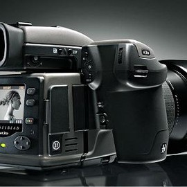Hasselblad - H3D-31 Digital