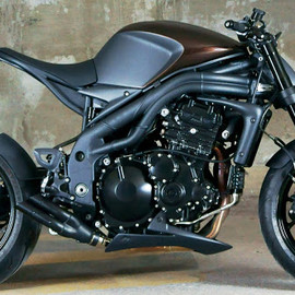 Triumph - Triumph 1050 Speed Triple by Impoz Design