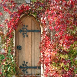 Essex - Autumn Door