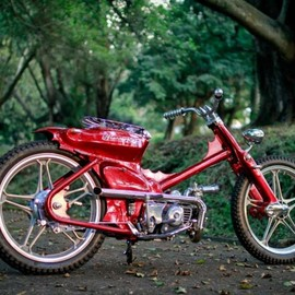 Honda - Recycled '82 Cub by jeZel