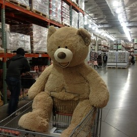 costco - Big Bear