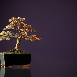 Ken To - Gorgeous Wire Bonsai Sculpture