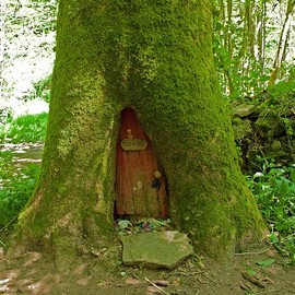 Wood Fairy door house!