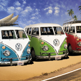 VW CAMPERS - Poster