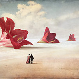 Christian Schloe - The Beach