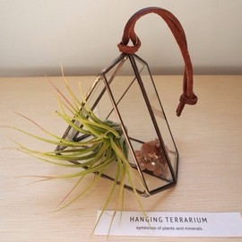 ROUSSEAU - hanging terrarium【triangle/antique gold】