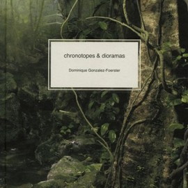 Dominique Gonzalez-Foerster - Chronotopes & Dioramas: Atlantic-Desert-Tropics