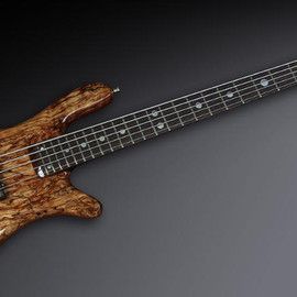 """Warwick - Streamer Stage II - #785 - 1"""" Spalted Maple A-Class / Mahogany"""