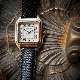 Cartier - SANTOS VINTAGE WATCH