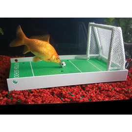 Hammacher Schlemmer - The Fish Agility Training Set.