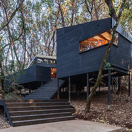 Northern California - forest house