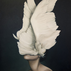 Amy Judd - Works