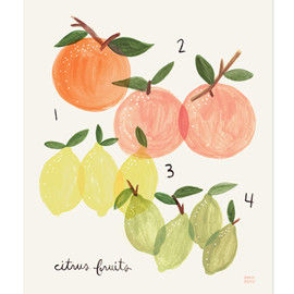 Rifle Paper co. - Citrus Print