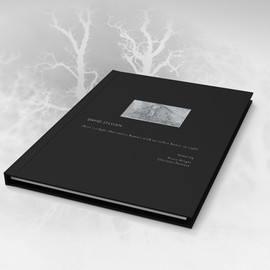 David Sylvian - THERE'S A LIGHT THAT ENTERS HOUSES WITH NO OTHER HOUSE IN SIGHT (DELUXE EDITION)