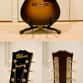 Gibson - Gibson B-25 Special VS