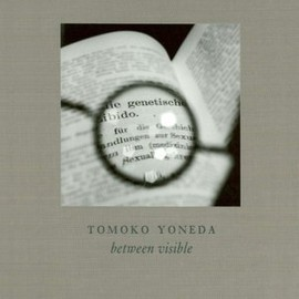 Tomoko Yoneda - Between Visible