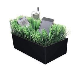 Grass Charging Valet