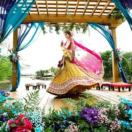 Indian wedding - Splendid