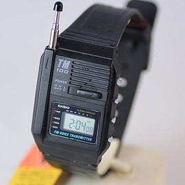 CASIO - TM-100