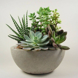 roughfusion - Concrete  Bowl - Light Grey