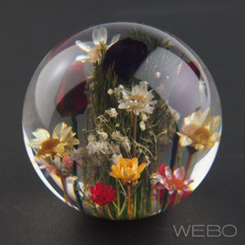 HAFOD GRANGE - PAPER WEIGHT Mixed Flora