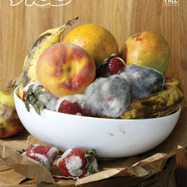 VICE - THE PHOTO ISSUE 2010: STILL LIFES