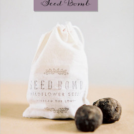 The Wedding Chicks - DIY seed bomb