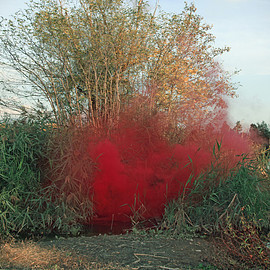 Filippo Minelli - Silence : Shapes - Shape red