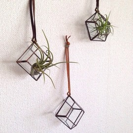 ROUSSEAU - hanging terrarium【square/antique gold】