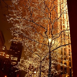 New York - Christmas