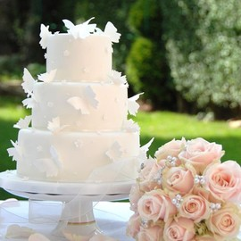 Pale Pink Butterfly Wedding Cake Image