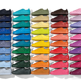 adidas originals - PHARRELL×adidas supercolor